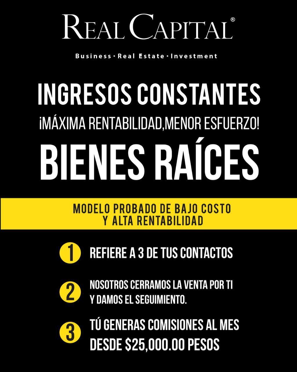 INGRESOS CONSTANTES MÁXIMA RENTABILIDAD MENOR ESFUERZO